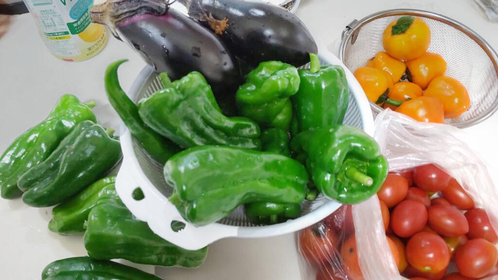 野菜補正_C90216B9-DEDA-4906-BDF4-C356E523FBF3 - 天海ひろみ